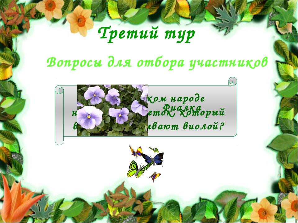Третий тур Вопросы для отбора участников Как в русском народе называется цвет...