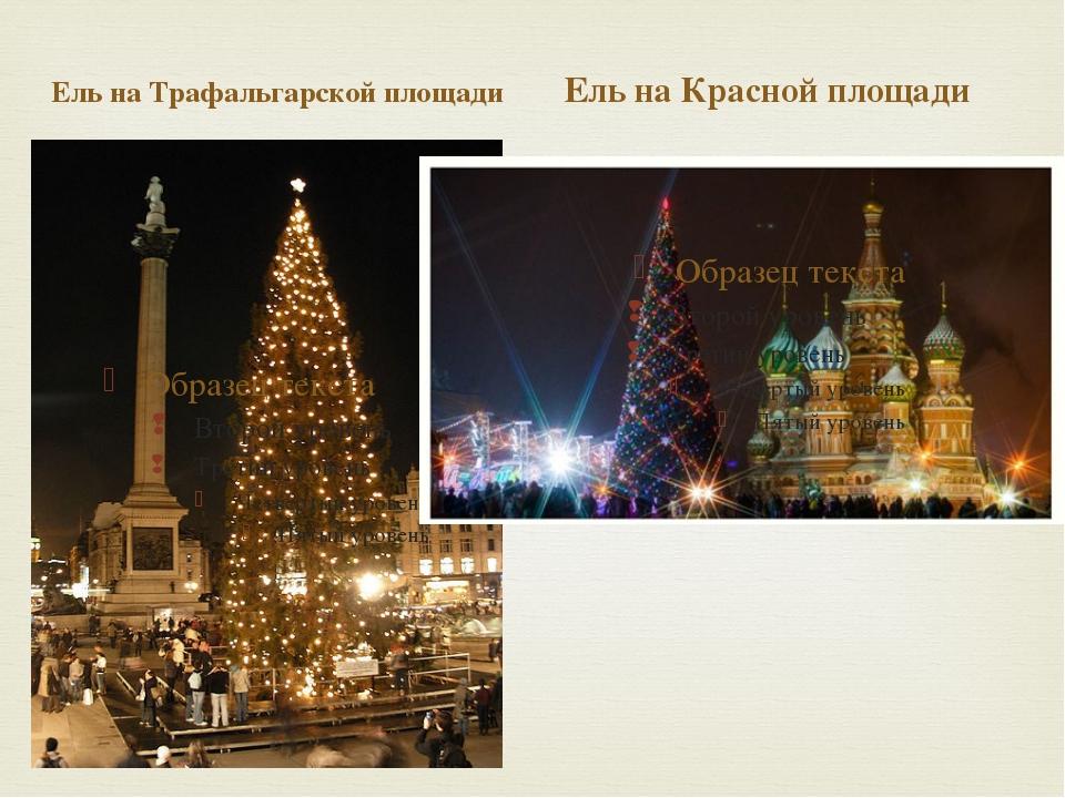Ель на Трафальгарской площади Ель на Красной площади 
