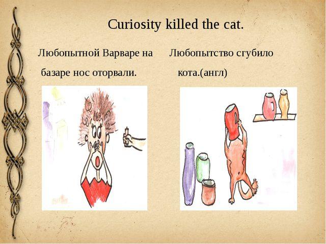 Curiosity killed the cat. Любопытной Варваре на Любопытство сгубило базаре но...