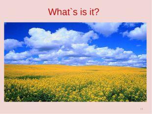 What`s is it? *