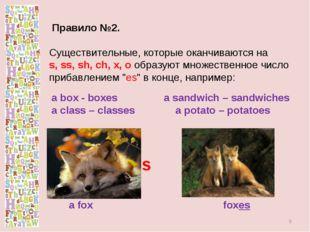 Правило №2. Существительные, которые оканчиваются на s, ss, sh, ch, x, o обр
