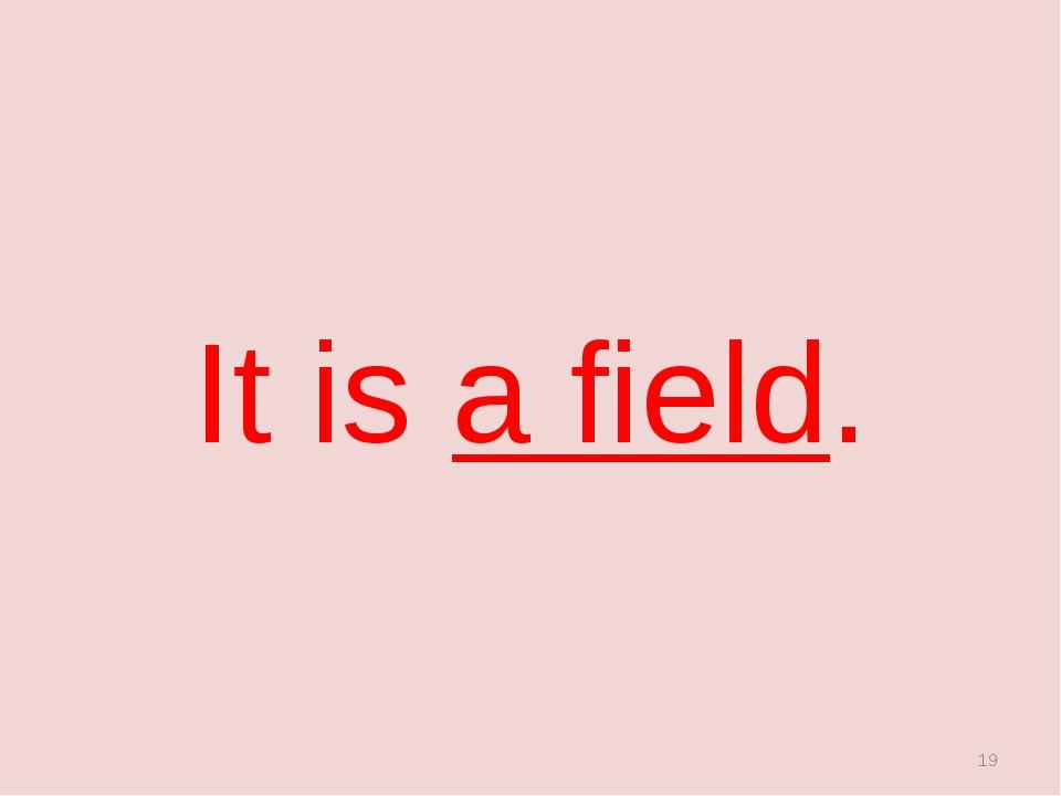 It is a field. *