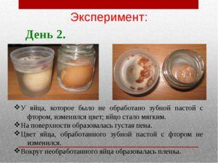 У яйца, которое было не обработано зубной пастой с фтором, изменился цвет; яй