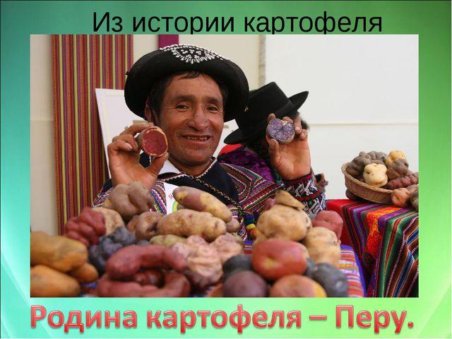 Из истории картофеля