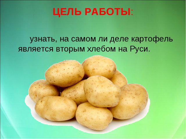 ЦЕЛЬ РАБОТЫ: узнать, на самом ли деле картофель является вторым хлебом на Р...