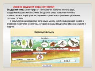 Значение воздушной среды в экосистеме Воздушная среда ( атмосфера ) – газооб
