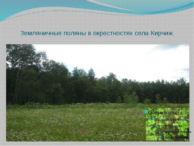 Земляничные поляны в окрестностях села Кирчиж