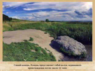 Синий камень. Камень представляет собой валун ледникового происхождения весом