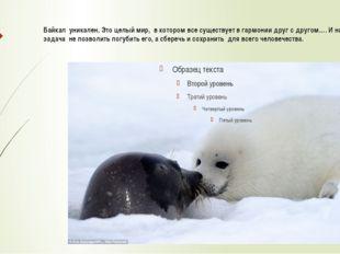 Байкал уникален. Это целый мир, в котором все существует в гармонии друг с др