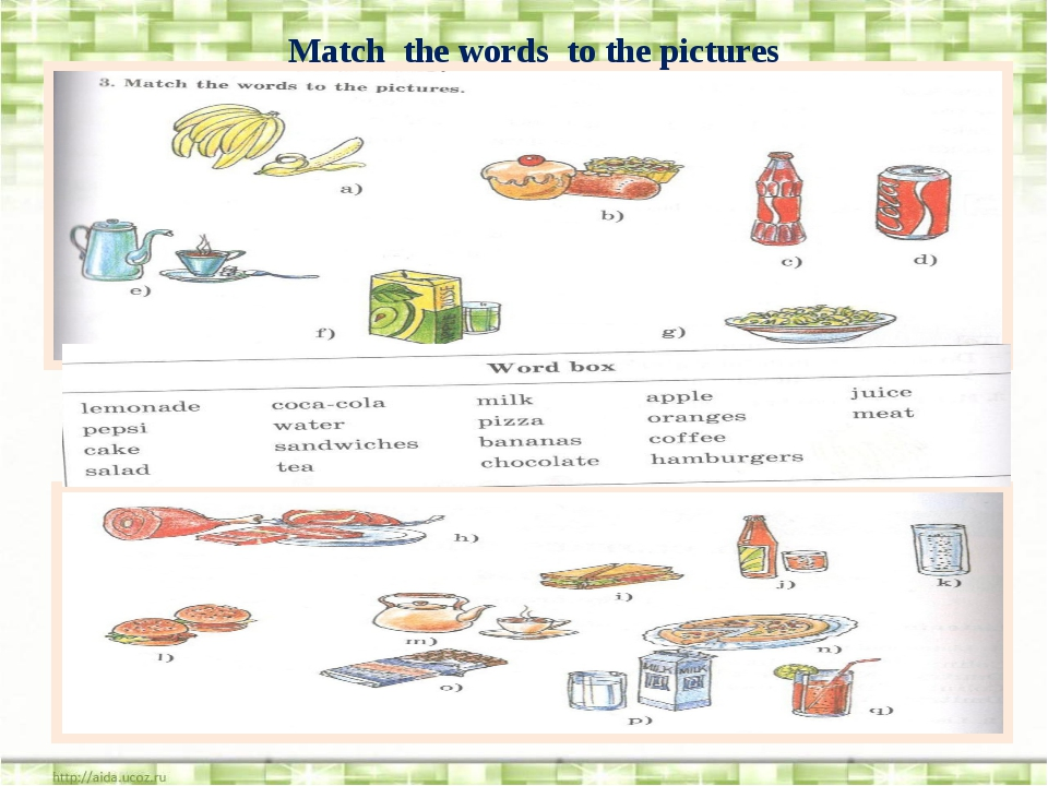Match the words to the pictures