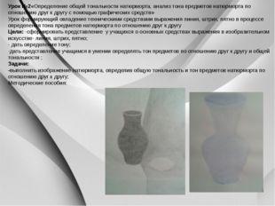 Урок №2«Определение общей тональности натюрморта, анализ тона предметов натю