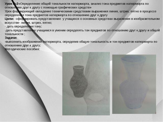 Урок №2«Определение общей тональности натюрморта, анализ тона предметов натю...