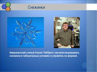 Снежинки Американский ученый Кеннет Либбрехт научился выращивать снежинки в