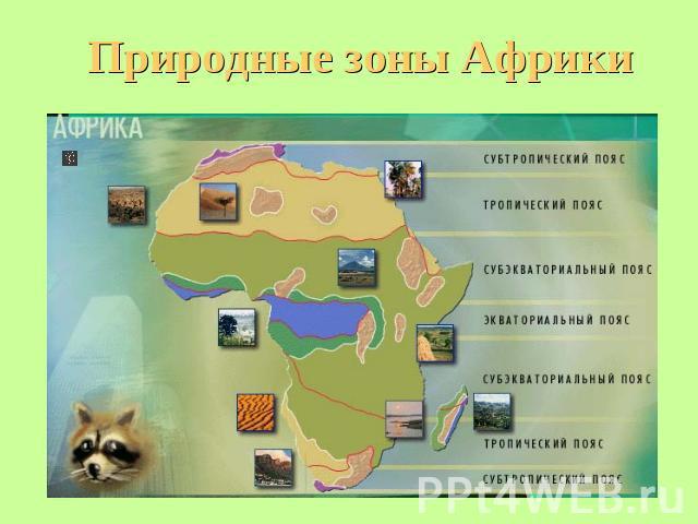 http://ppt4web.ru/images/73/5542/640/img9.jpg
