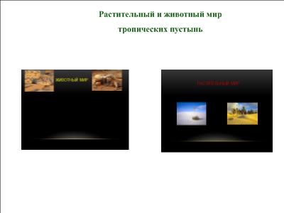 C:\Users\Роман\Desktop\Африка_10.png