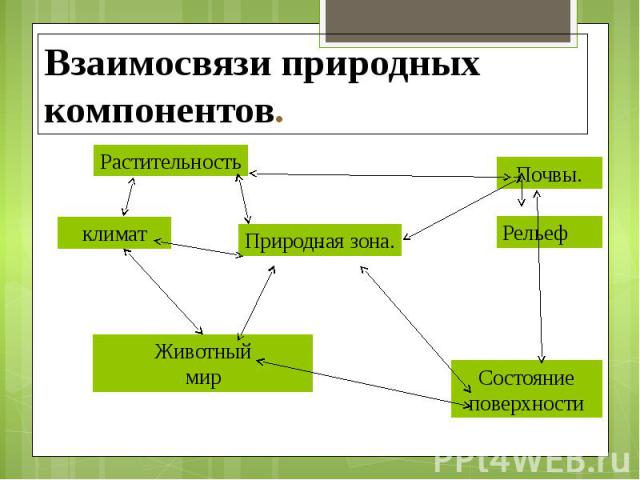 http://fs1.ppt4web.ru/images/1487/82905/640/img3.jpg