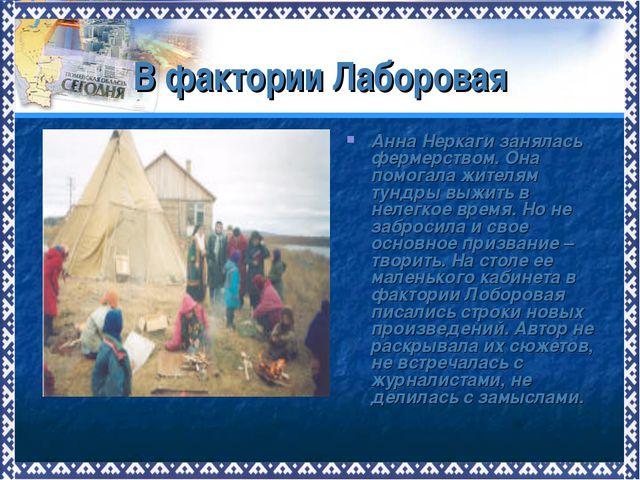 В фактории Лаборовая Анна Неркаги занялась фермерством. Она помогала жителям...