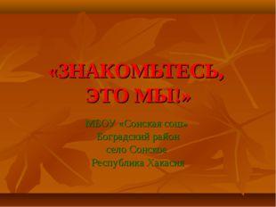 «ЗНАКОМЬТЕСЬ, ЭТО МЫ!» МБОУ «Сонская сош» Боградский район село Сонское Респу