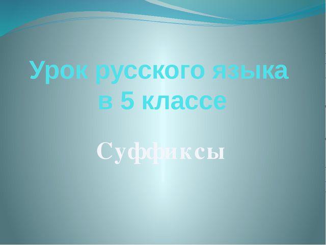 Урок русского языка в 5 классе Суффиксы