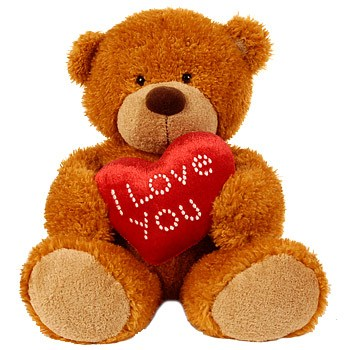 C:\Users\Ардак\Pictures\teddy_bear_09.jpg