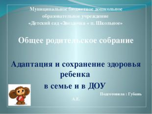 Муниципальное бюджетное дошкольное образовательное учреждение «Детский сад «