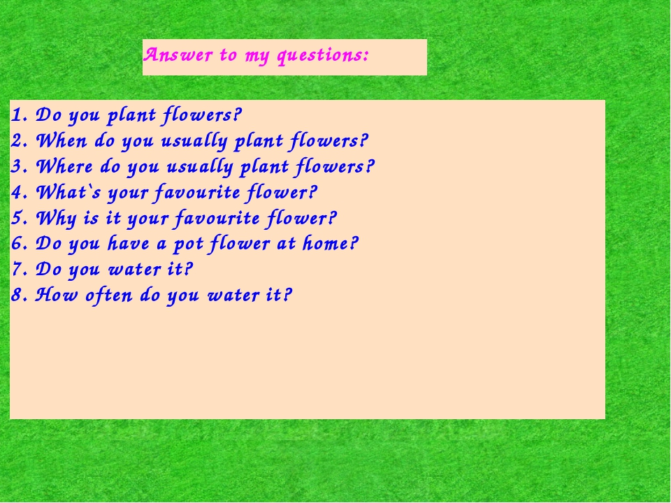 Answer to my questions: 1. Do you plant flowers? 2. When do you usually plant...