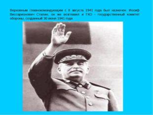Верховным главнокомандующим с 8 августа 1941 года был назначен Иосиф Виссари