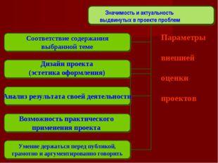 Параметры внешней оценки проектов Значимость и актуальность выдвинутых в прое