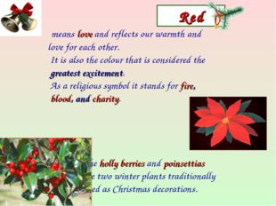 Red means love and reflects our warmth and love for each other. It is also th