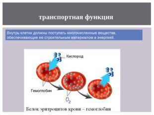 транспортная функция Внутрь клетки должны поступать многочисленные вещества,