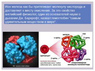 Ион железа как бы притягивает молекулу кислорода и доставляет к месту окислен