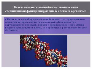 «Жизнь есть способ существования белковых тел, существенным моментом которого