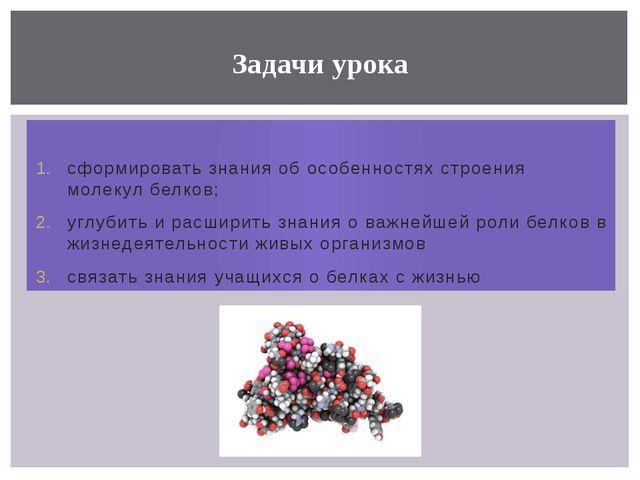 сформировать знания об особенностях строения молекул белков; углубить и расш...