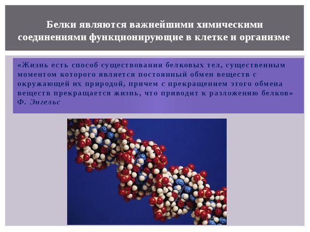 «Жизнь есть способ существования белковых тел, существенным моментом которого...