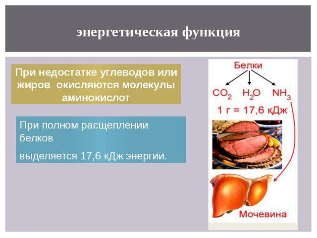 энергетическая функция При полном расщеплении белков выделяется 17,6 кДж энер...