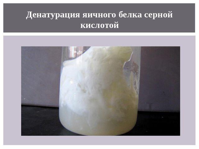 Денатурация яичного белка серной кислотой