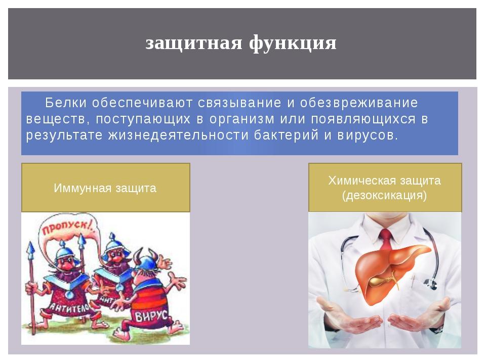 Белки обеспечивают связывание и обезвреживание веществ, поступающих в органи...