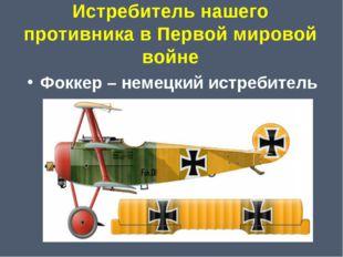 Истребитель нашего противника в Первой мировой войне Фоккер – немецкий истреб