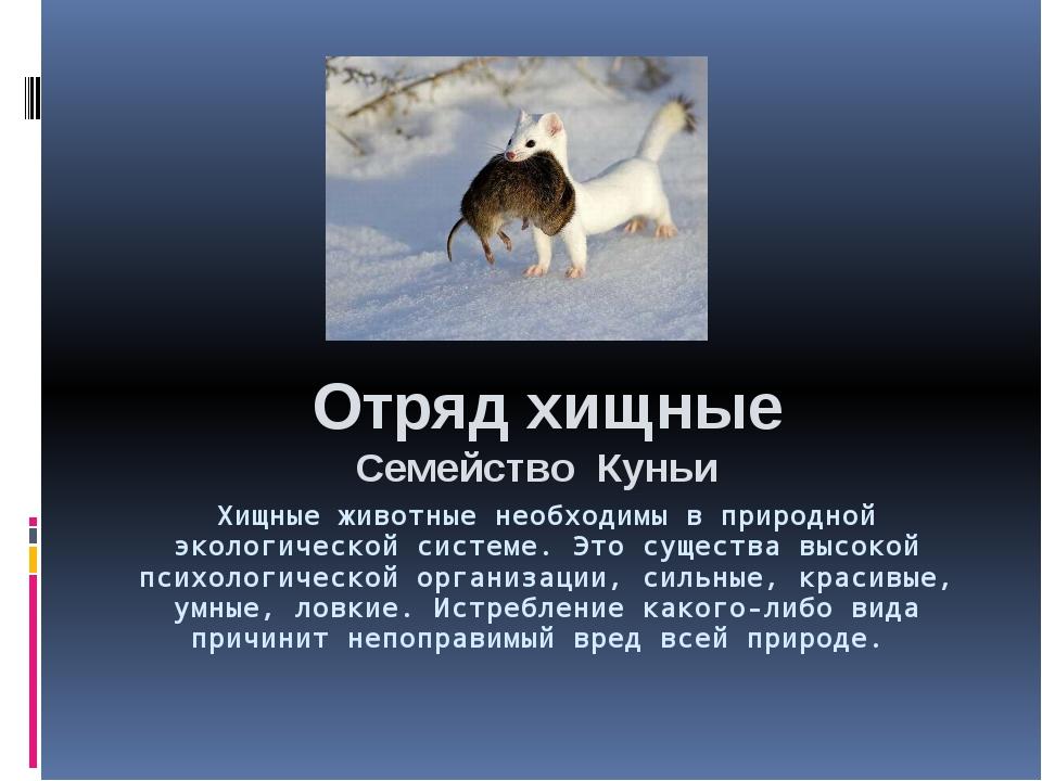 Хищные животные необходимы в природной экологической системе. Это существа вы...