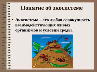 Понятие об экосистеме Экосистема – это любая совокупность взаимодействующих ж