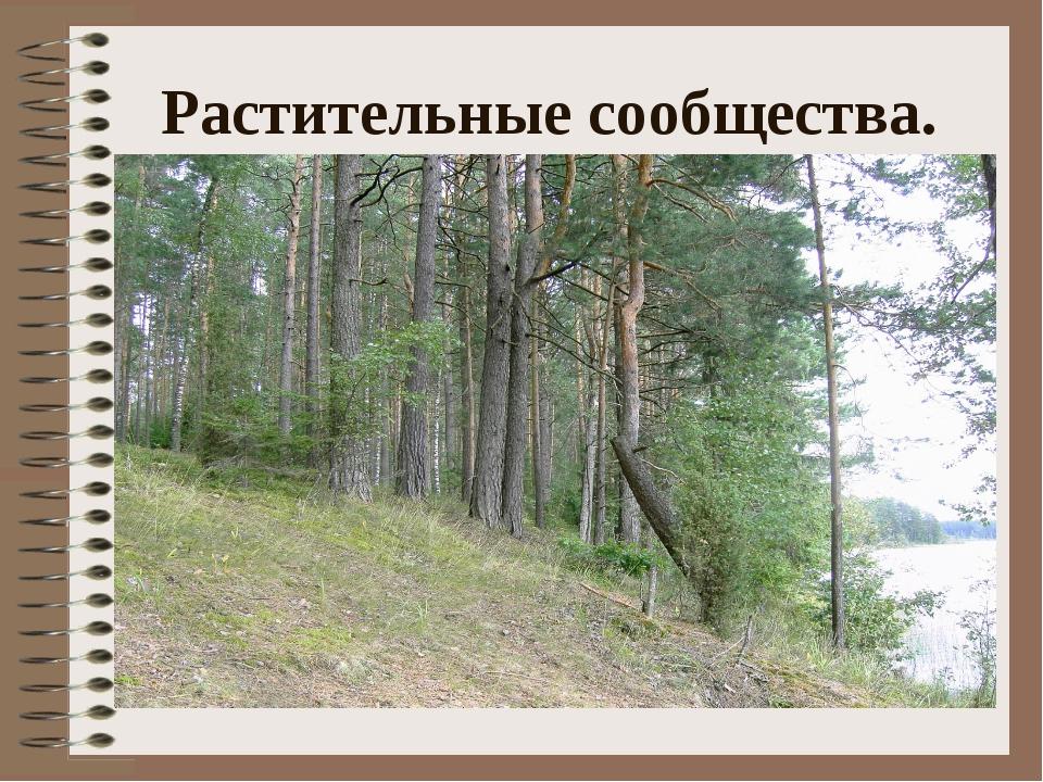 Растительные сообщества.