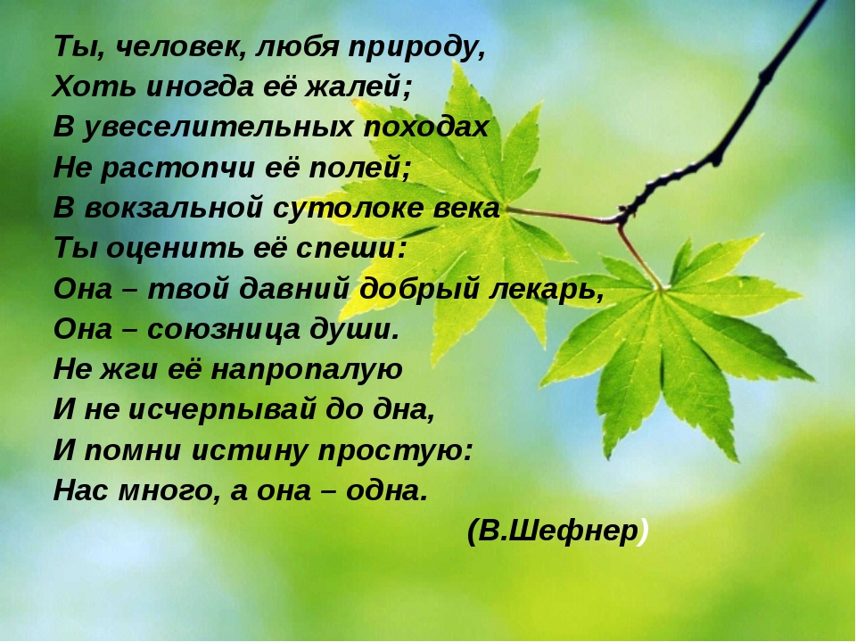 Ты, человек, любя природу, Хоть иногда её жалей; В увеселительных походах Не...