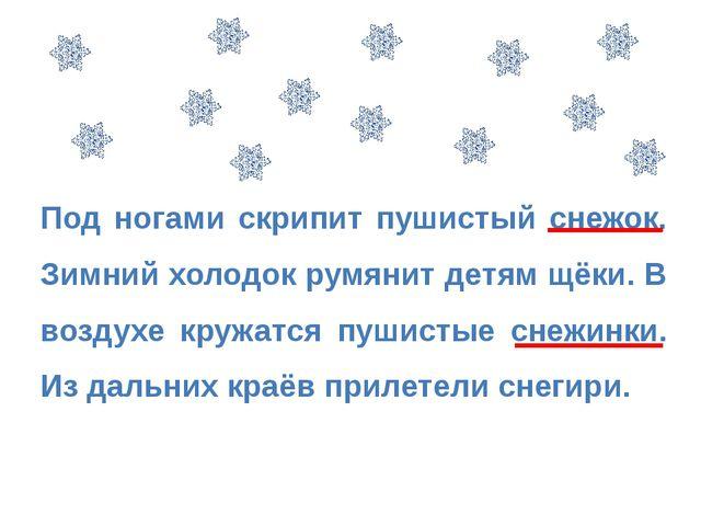 Под ногами скрипит пушистый снежок. Зимний холодок румянит детям щёки. В возд...