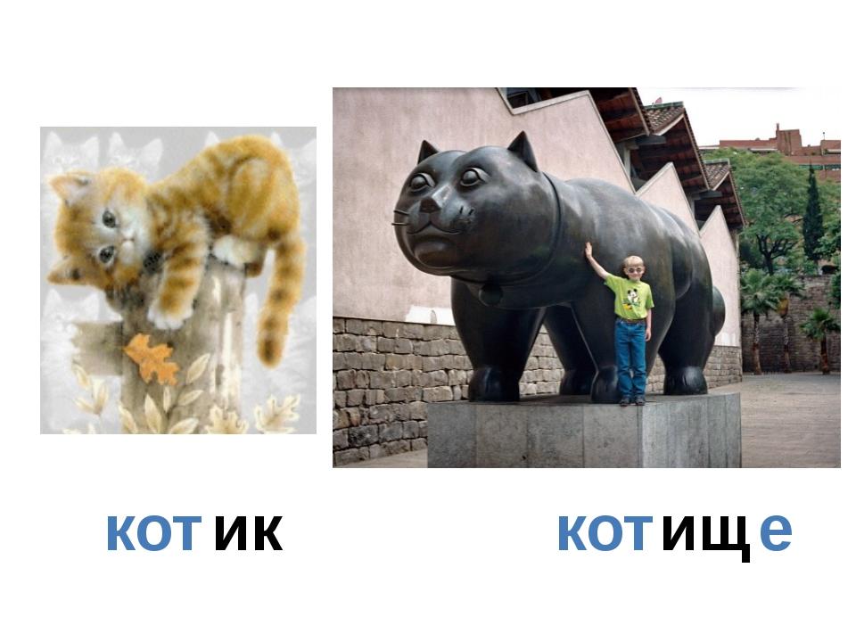 кот ик кот ищ е