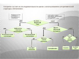 Алгоритм состоит из последовательности шагов с использованием алгоритмической