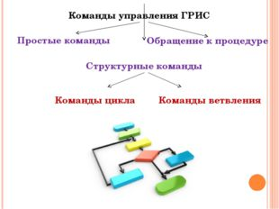 Команды управления ГРИС Обращение к процедуре Структурные команды Простые ком