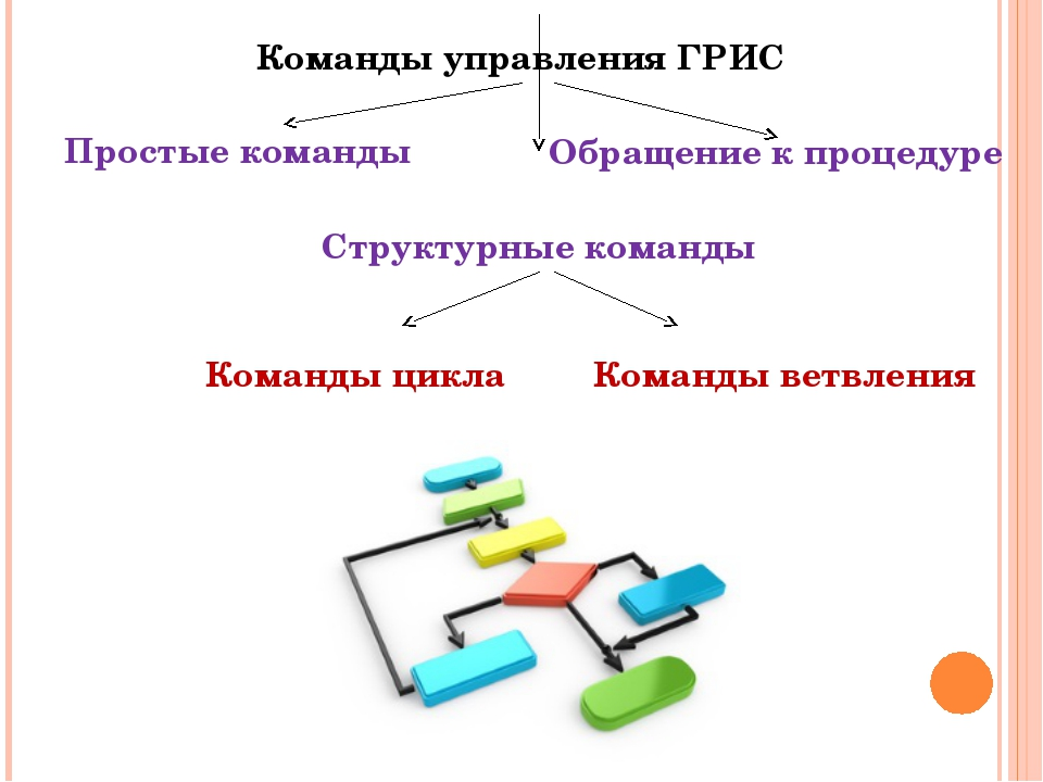 Команды управления ГРИС Обращение к процедуре Структурные команды Простые ком...