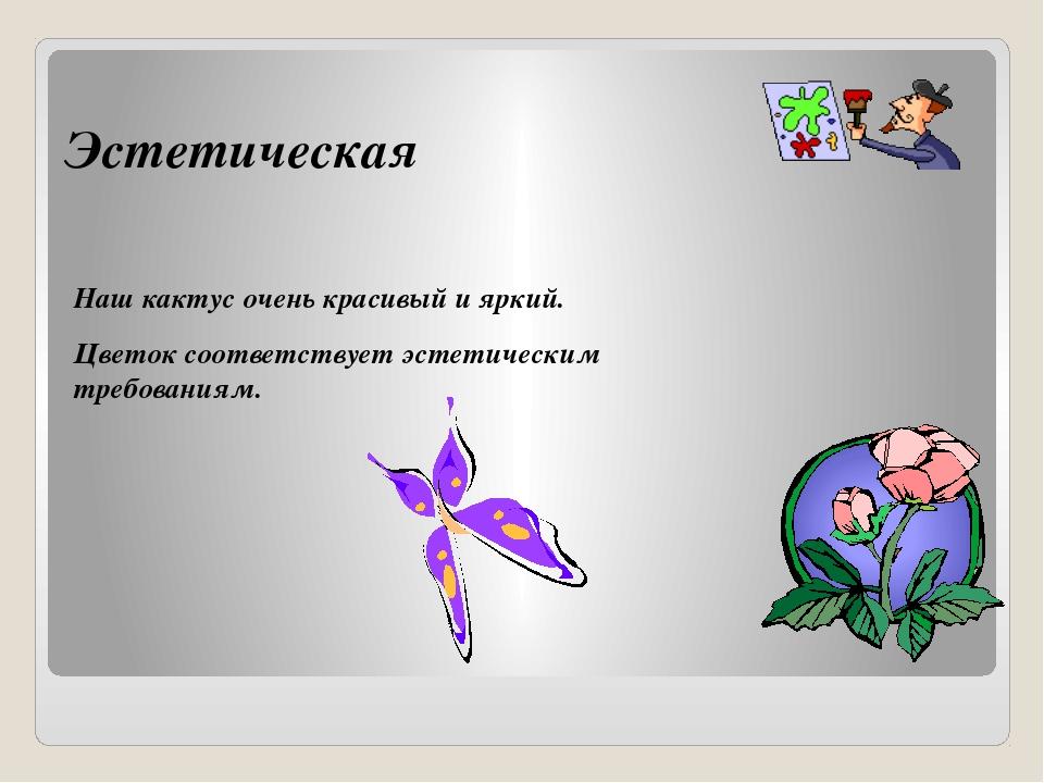 Эстетическая Наш кактус очень красивый и яркий. Цветок соответствует эстетиче...