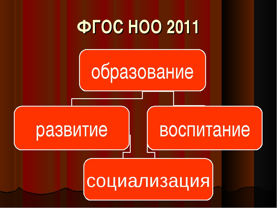 ФГОС НОО 2011 социализация