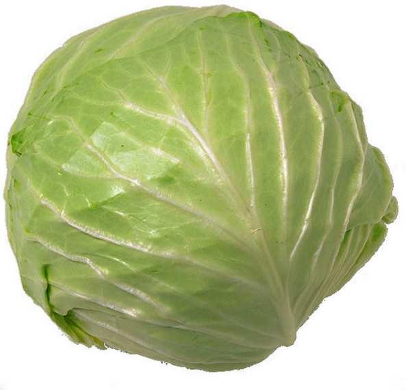 http://900igr.net/datai/eda/Ovoschi-3.files/0008-013-Kapusta-cabbage.jpg